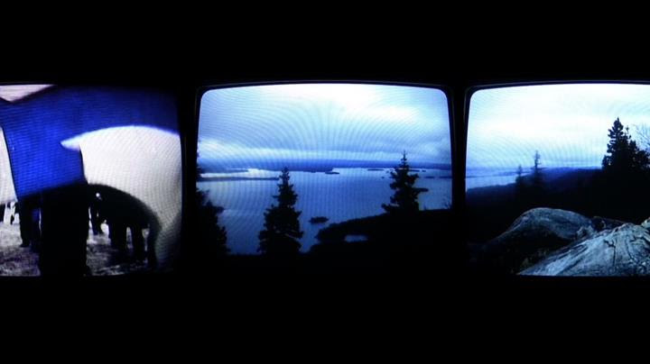 """In Marko Lampisuo's short film """"National Landscape"""" scenes from the Koli hills combine with flashes from alt-right demonstrations."""